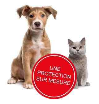 Agria Assurance Pour Animaux Agria Assurance Pour Animaux